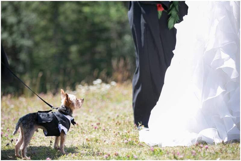 delta_kananaskis_wedding_photographer035